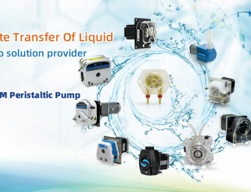 How many types of peristaltic pump motor are there?